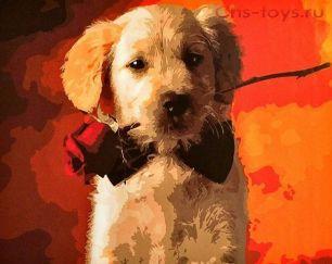 Картина по номерам Собачка с розой E454
