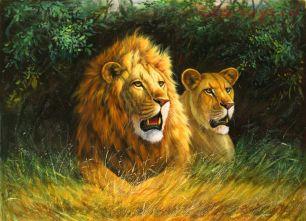 Картина по номерам Лев и львица E372