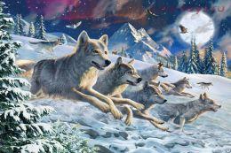 Картина по номерам Волчья стая E086