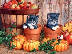 Картина по номерам Котята в горшках RSL0013